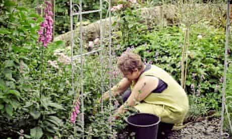 Fiona Pickles Firenza Floral Design