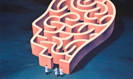 Scientists at the entrance to a head-shaped maze