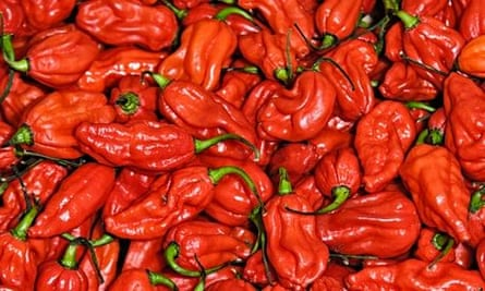 How much chilli can you handle?