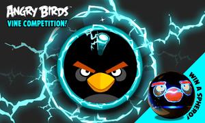 Angry birds vine 2