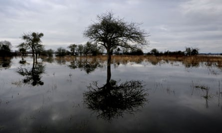 Flooding over farmland on the Somerset Levels in January.