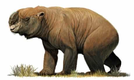 Diprotodon optatum from the Pleistocene of Australia.