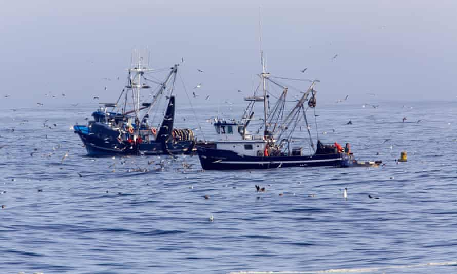 Fishing boats haul in their catch in Monterey Bay, California