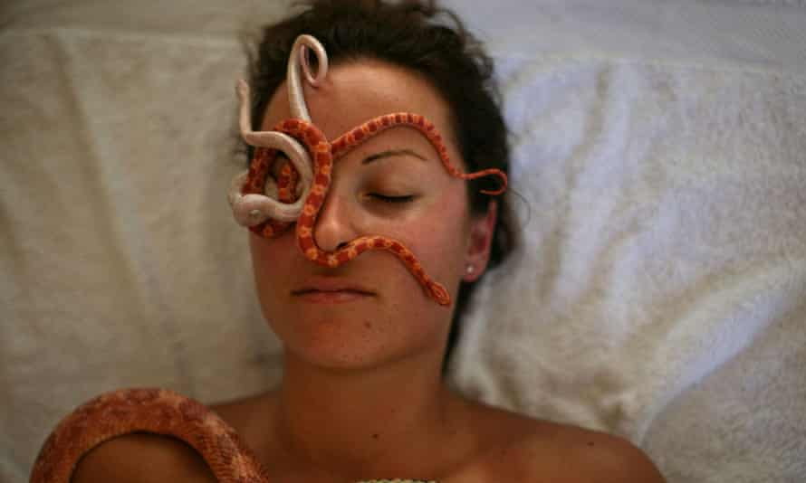A woman receives a snake massage at Barak's snake spa in Israel