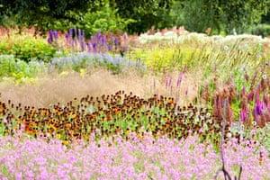 The Millenium Garden at Pensthorpe nature reserve, Norfolk, UK, was designed by Piet Oudolf,