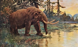 Illustration of a prehistoric mastodon