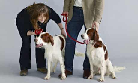 Paula Ryan with Irish red and white setters Rough and Tumble