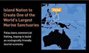 Palau infograph