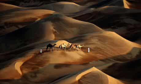 Tribesmen lead their camels through the sand dunes of the Liwa desert