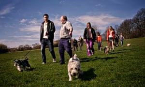 How to set up a dog-walking group - Do Something