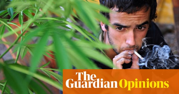 Cannabis really can trigger paranoia | Science | The Guardian