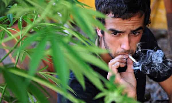 weed paranoia