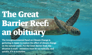 A screenshot of the Guardian Australia interactive, The Great Barrier Reef: an obituary