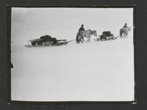 Ponies on the march, Great Ice Barrier, 2 December 1911.