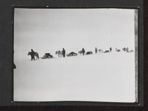 """Ponies on the march, Great Ice Barrier, 2 December 1911  (""""Line of men and ponies pulling laden sledges on the ice. A man walks at the head of each pony (seven groups). They walk from right to left across the centre of photograph"""" )."""