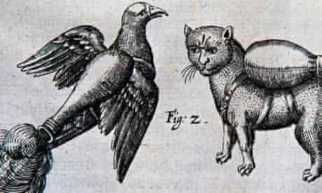 Illustrations from Franz Helm's manual