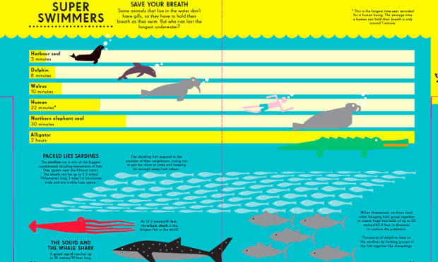 A visualisation from the infographic book for children, Animal Kingdom book which will be published in April. Illustration by Nicholas Blechman