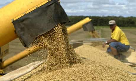 Brazil farmer loads trucks with soybeans