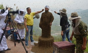 Assistants use burning incense and cigarettes to drive away from the face of She Ping, a 34-year-old beekeeper, during an attempt to cover She's body with bees, in Chongqing municipality April 9, 2014. He used queen bees to successfully attract more than 460,000 bees, weighing over 45 kg (99 lbs), within 40 minutes, local media reported.