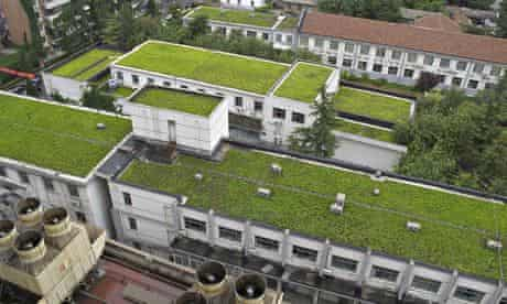 China green roofs