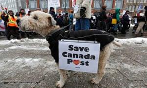 Canada Post dog protest Ottowa