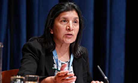 Rashida Manjoo, UN special rapporteur
