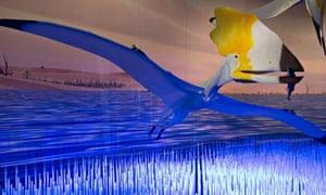 Pterosaurs Am Mus Nat History