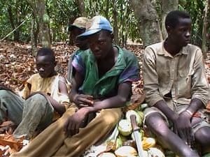 ASI 175th birthday: Ivory Coast child labourers on a cocoa farm