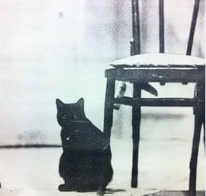 Osbourne, the Royal Court theatre cat
