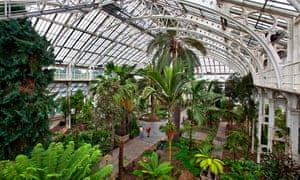 The Temperate House in Kew Gardens, which has the largest plant collection in the world