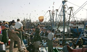 Fishermen in Laayoune, Western Sahara