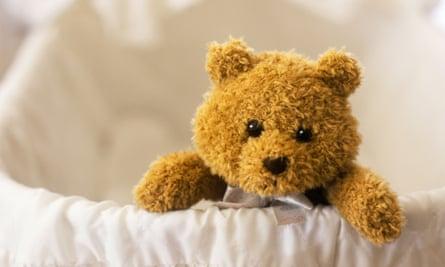bear stillbirth