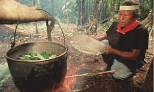 A shaman in Ecuador boils ayahuasca leaves.