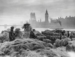 Men unload esparto grass from barges at a wharf near Lambeth on the River Thames. The grass is used for making bank notes and stockings. Westminster Bridge, Houses of Parliament and Big Ben in the background, 1938.