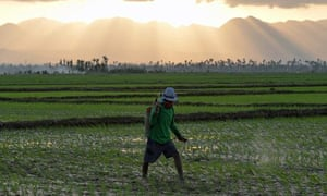 A farmer in Santa Fe in Leyte province, central Philippines