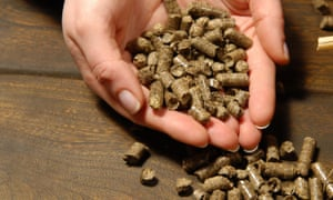 Biomass boilers that burn woodpellets are one of the technologies eligible for payments under the renewable heat incentive