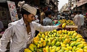 mango vendor old delhi