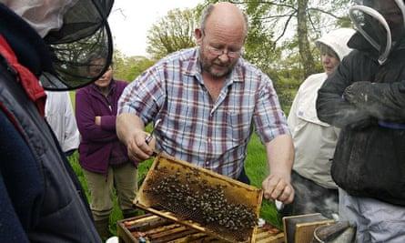 Live Better: Bees Gareth Baker