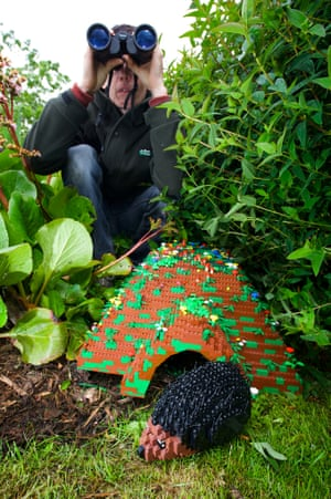 A new wildlife garden featuring unique habitats made from hundreds of Lego bricks is opening at the Legoland Windsor Resort today to mark the first anniversary of the RSPB's Giving Nature a Home Campaign.