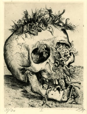 Der Krieg no.31 Skull (Schädel) For all its waste, the war provided a windfall for scavengers. The First World War produced generations of happy worms and maggots. Trench rats roamed as big as beavers. Gas was sometimes a welcome respite as it decimated these pests.