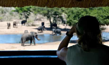 A safari in Africa