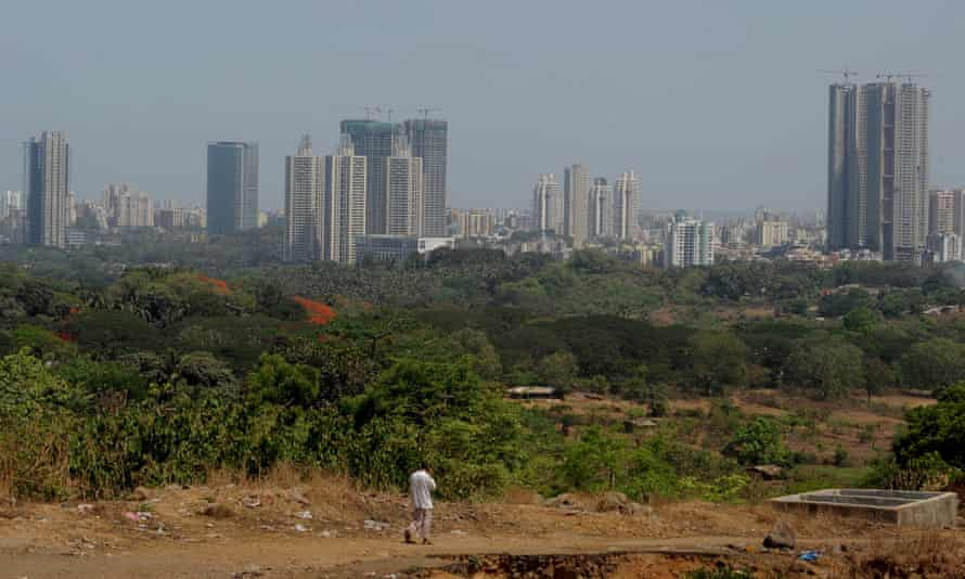 Newly constructed high-rises buildings are seen from within The Sanjay Gandhi National Park in Mumbai on May 11, 2012.
