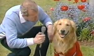 Bob Wilson interviews a dog
