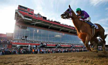 preakness stakes horse race california chrome