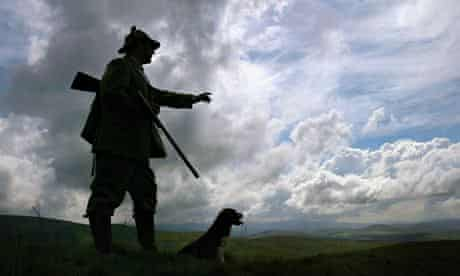 Grouse shooting in Scotland