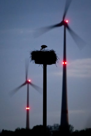 A stork stands in his nest amid turning wind turbines near Schoeneck, Germany, 15 April 2014.