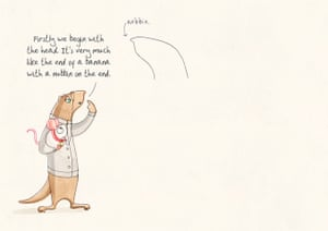 how to draw a weasel