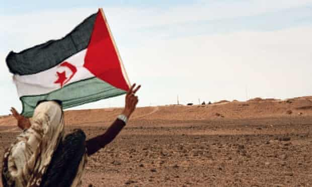 A girl from Western Sahara flies a Sahrawi flag in front of the Moroccan Wall in 2011.
