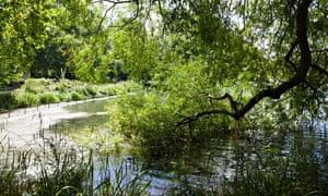 Battersea Park Pond
