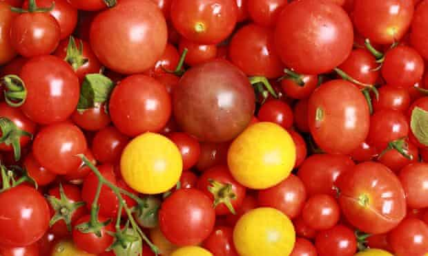 Live Better: Tomatoes